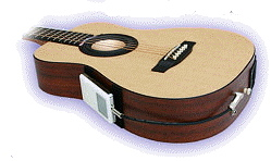 iCoustic Guitar