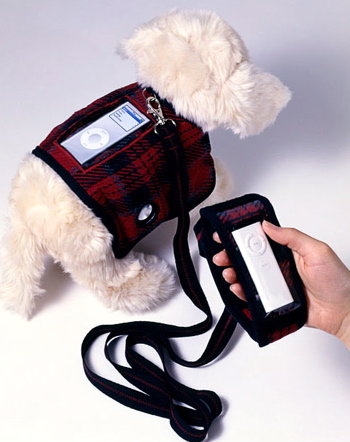 Turn Your Dog Into An iPod Boombox
